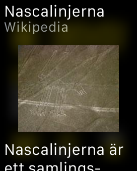Screenshot: Nazca Lines